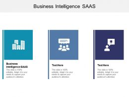 Business Intelligence SAAS Ppt Powerpoint Presentation Summary Pictures Cpb