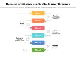 Business Intelligence Six Months Journey Roadmap