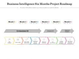 Business Intelligence Six Months Project Roadmap