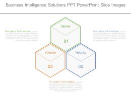 Business Intelligence Solutions Ppt Powerpoint Slide Images