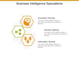 Business Intelligence Specialisms Example Ppt Presentation