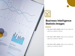 Business Intelligence Statistic Images