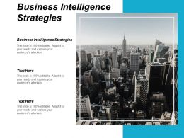 Business Intelligence Strategies Ppt Powerpoint Presentation Infographic Template Picture Cpb