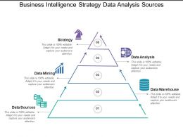 Business Intelligence Strategy Data Analysis Sources