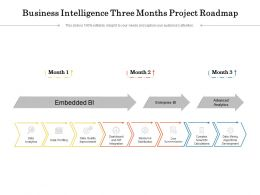 Business Intelligence Three Months Project Roadmap
