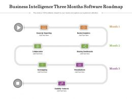 Business Intelligence Three Months Software Roadmap