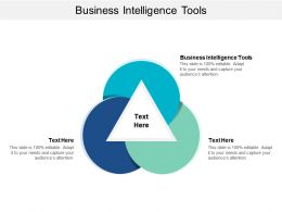 Business Intelligence Tools Ppt Powerpoint Presentation Infographic Template Layout Cpb