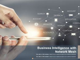 Business Intelligence With Network Mesh