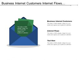 Business Internet Customers Internet Flows Financial Outcomes Partner Outcomes