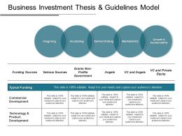 Business Investment Thesis And Guidelines Model