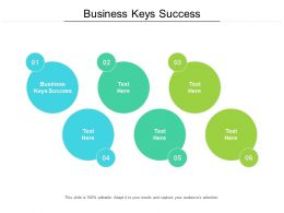 Business Keys Success Ppt Powerpoint Presentation File Sample Cpb