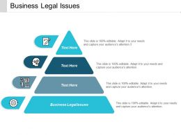 Business Legal Issues Ppt Powerpoint Presentation Pictures Visual Aids Cpb