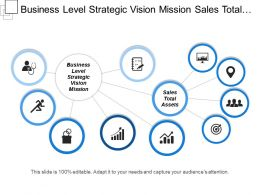 Business Level Strategic Vision Mission Sales Total Assets