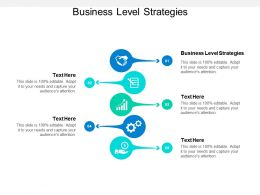 Business Level Strategies Ppt Powerpoint Presentation Infographic Template Smartart Cpb