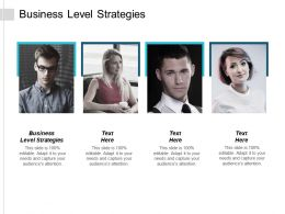 Business Level Strategies Ppt Powerpoint Presentation Portfolio Show Cpb
