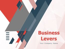 Business Levers Strategy Managerial Growth Profit Margin
