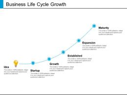 Business Life Cycle Growth Powerpoint Presentation Examples