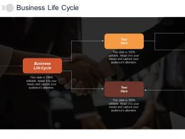 Business Life Cycle Ppt Powerpoint Presentation Gallery Information Cpb