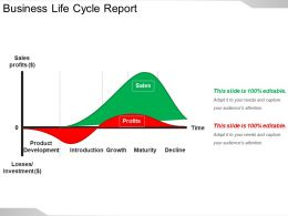 Business Life Cycle Report Powerpoint Slide Deck