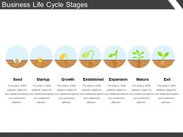 Business Life Cycle Stages Powerpoint Slide Graphics