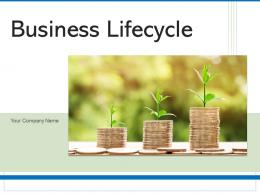 Business Lifecycle Automation Companies Financials Development Growth