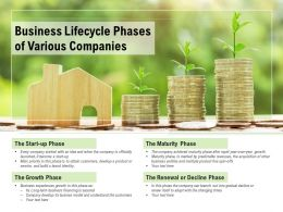 Business Lifecycle Phases Of Various Companies