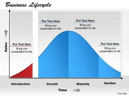 business_lifecycle_powerpoint_template_slide_Slide01
