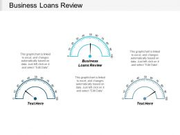 Business Loans Review Ppt Powerpoint Presentation Gallery Show Cpb
