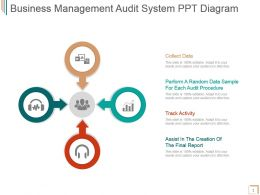 Business Management Audit System Ppt Diagram