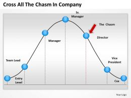 Business Management Consultant The Chasm Company Powerpoint Templates PPT Backgrounds For Slides