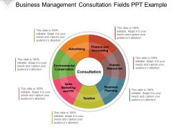 Business Management Consultation Fields Ppt Example