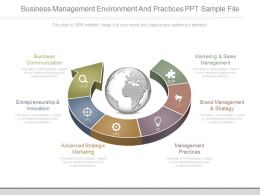 Business Management Environment And Practices Ppt Sample File