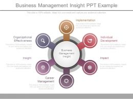 Business Management Insight Ppt Example