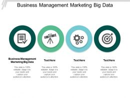 Business Management Marketing Big Data Ppt Powerpoint Presentation Slides Summary Cpb