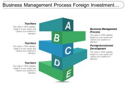 Business Management Process Foreign Investment Development Media Advertising Cpb
