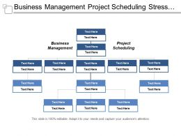 Business Management Project Scheduling Stress Management Entrepreneur Business Cpb
