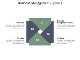 Business Management Systems Ppt Powerpoint Presentation Show Portrait Cpb