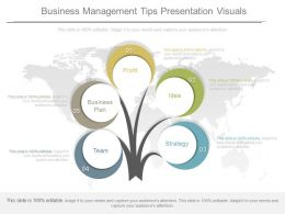Business Management Tips Presentation Visuals