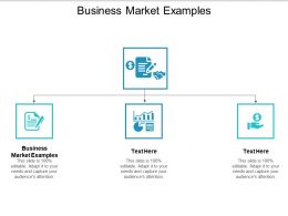 Business Market Examples Ppt Powerpoint Presentation File Example Cpb