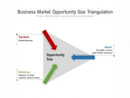 Business Market Opportunity Size Triangulation