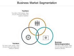 Business Market Segmentation Ppt Powerpoint Presentation Model Sample Cpb