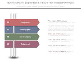 Business Market Segmentation Template Presentation Powerpoint