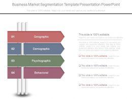 Business Market Segmentation Template Presentation Powerpoint