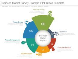 Business Market Survey Example Ppt Slides Template
