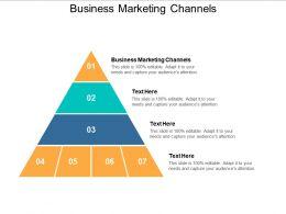 Business Marketing Channels Ppt Powerpoint Presentation Portfolio Maker Cpb