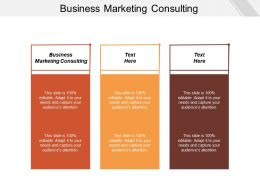 Business Marketing Consulting Ppt Powerpoint Presentation Gallery Microsoft Cpb