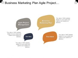 Business Marketing Plan Agile Project Management Content Development