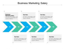 Business Marketing Salary Ppt Powerpoint Presentation Templates Cpb
