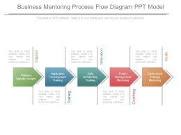 Business Mentoring Process Flow Diagram Ppt Model