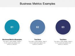 Business Metrics Examples Ppt Powerpoint Presentation Ideas Designs Cpb